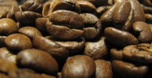 bravos gastro arabica kávébabok