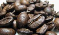 molinari espresso kávébabok