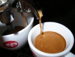pascucci mild kávé csapolás