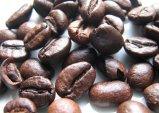 pascucci mild kávébabok