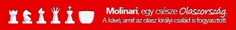 Molinari felső banner 1
