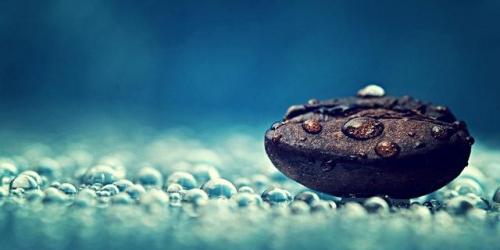 Pellini víz világnapja