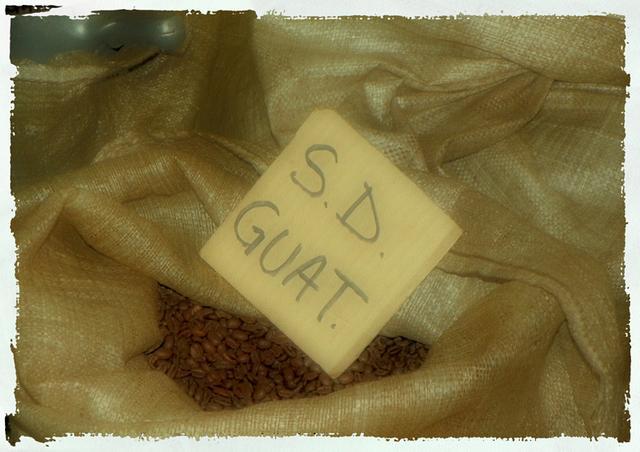 goriziana kávépörkölő so kávé