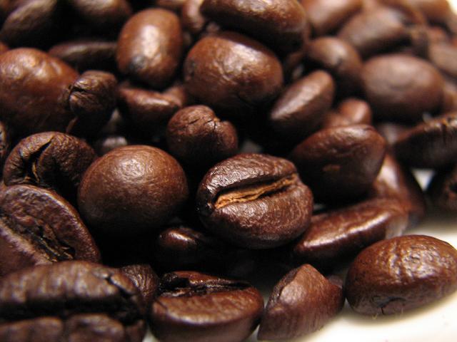 barbera esperia kávé kávébabok