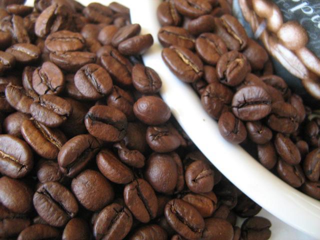 bristot rainforest kávé kávébabok