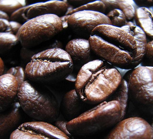 don cortez kávébabok