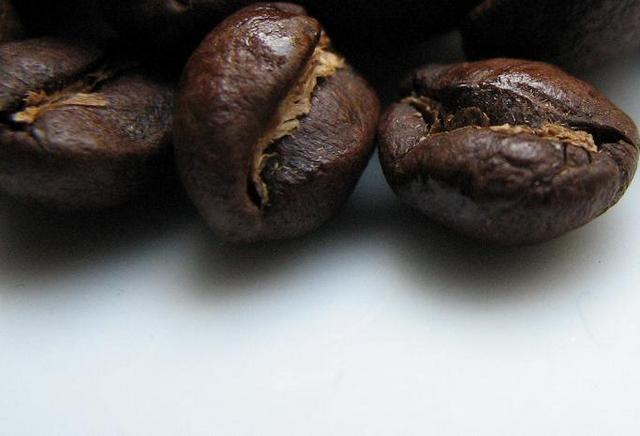 kaucziner kavemanufaktura latin fiesta kávébabok