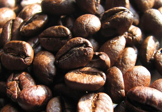 lamborghini kávébab