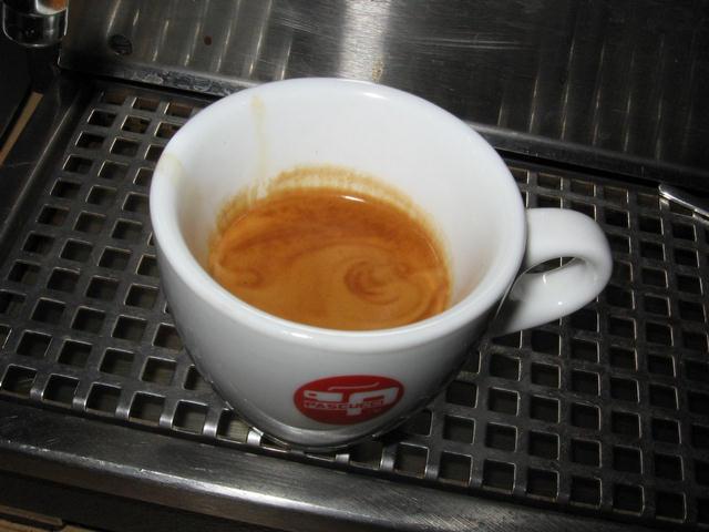 pascucci mild espresso